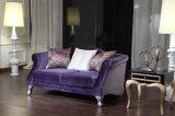Jeu vivant bon marché de sofa de tissu de Roon