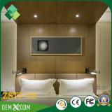 Muebles competitivos de Foshan de la teca costosa de la sala de estar