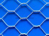 Rete metallica saldata esagonale con l'alta qualità