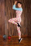 Влаги втулки женщин Sportswear гимнастики Wicking атлетический Spandex+Polyester длинней