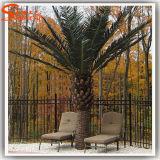 Fabrik-direkte künstliche Dattel-Palme für Garten-Dekoration