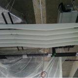 Soffitto falso su ordine del metallo con il sistema di sospensione per uso interno