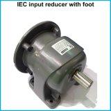 IECは取付けられたG3シリーズ螺旋形の電気連動させられたモーターLmフランジを付けたようになった