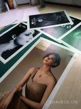 고품질 녹색 디지털 인쇄 물자, 가벼운 상자 필름