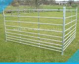 Galvanizado 7 cañizos de las ovejas del carril/cañizos del parto