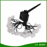 La cadena solar de la flor de 20 LED Rose enciende a Senor ligero la Christmas Lamps Waterproof