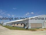 Almacén caliente de la estructura de acero de la fábrica de la venta