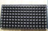Potenciômetro de flor de Balck picosegundo de 128 pilhas para a bandeja da semente dos QUADRIS do preto do jardim