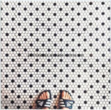 Hexagonal Shapeの豪華なDesign Ceramic Mosaic Tiles