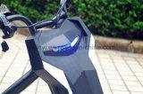 승인되는 100W 먼지 자전거 세륨의 고품질 싼 가격