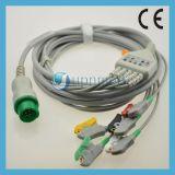 Cable del terminal de componente ECG de la una sola pieza 5 de la serie de Biolight M