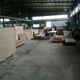 Portes en bois d'acier inoxydable de garantie de la Chine