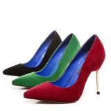 Kleid-Schuhe der hohe dünne Ferse-reizvolle Dame-Women