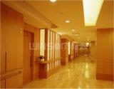 Comitato composito di alluminio del grano di legno/decorazione parete interna