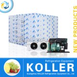 30 Kubikmeter Cold Lagerraum für Fish, Meat, Vegetable, Fruit Storage