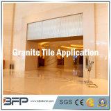 Proyecto de Materiales Natural Granito / pizarra / de la teja de mármol para Paredes interiores
