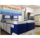 De efficiënte Ononderbroken Automatische Verpakkende Machine Op grote schaal van de Blaar, de Certificatie van Ce