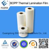 Film de laminage thermique de 1 po (635 mm * 200 m)
