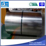 Qualidade principal chapa de aço galvanizada na bobina