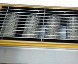 6バーナーの環境のロースター(ガス)のとK233/とK233 B
