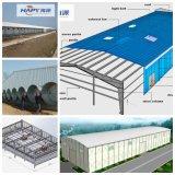 Construção de aço Prefab Sheed de Hapy para a casa do cultivo de aves domésticas