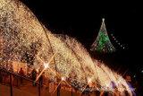 Het openlucht LEIDENE van Kerstmis van de Decoratie Kleurrijke Licht van het Koord