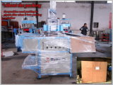 Hy-540760 Plastic Tray Thermoforming Machine с Automatic Cutting Counting Stacking