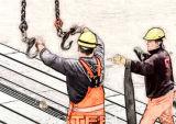 Poliestere Webbing Slings per Lifting (EN1492-1)