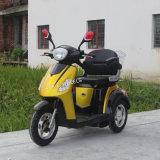 새로운 디자인 500W 3 바퀴에 의하여 무능하게 하는 스쿠터 Trike 의 편리한 시트 (TC-020)를 가진 전기 성숙한 세발자전거