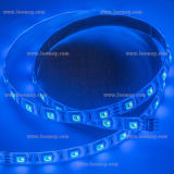 LM80 aprobó 1200lm / M SMD5050 14.4W / m RGB tira flexible del LED