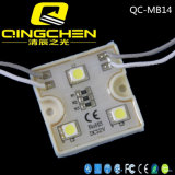 Ultra Waterdichte Digitale RGB LEIDENE DC12V 5050SMD van de Helderheid Modules