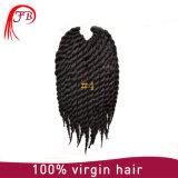 아프로 Senegalese 끈목 머리 연장 강선전도 끈목 합성 물질 머리