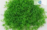 Spärliches Tree Powder für Landscaping