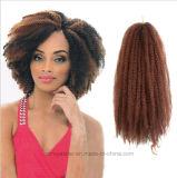 アフリカのかつらのブレードのアフリカのねじれた巻き毛のFleecinessの爆発の毛の拡張