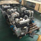 gruppo elettrogeno diesel silenzioso 10kv con CA a tre fasi