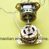Elektrischen Waschmaschine-Motor entwässern