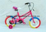 رخيصة وشعبيّة جدي درّاجة أطفال مع تدريب عجلة