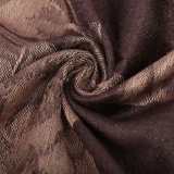 Châle chaud de Madame Winter Pashmina Fashion Scarf