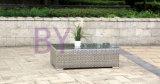 Sofa extérieur rural de patio de loisirs de rotin avec des coussins