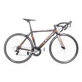 Bicicletta della strada del blocco per grafici della lega di alluminio del fornitore 16-Speed della bicicletta della Cina