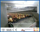 aufbereitende Zeile des Pfirsiches