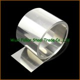 Chlorination Systems를 위한 N06022/C22 Nickel Alloy Coil와 Sheet