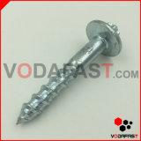 Boulon principal rond spécial adapté aux besoins du client avec l'écrou de bride