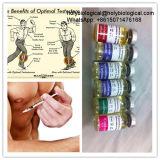 Testosterona esteróide Enanthate do pó de Enanthate do teste da hormona eficaz do Bodybuilding