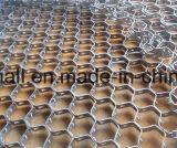 Schildkröten-Blatt-Ineinander greifen-Hex refraktäres Futter