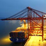 Frete de mar LCL do oceano do transporte FCL Xingang Tianjin China para trocar a porta comercial Vladivostok Rússia dos peixes