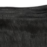 Cabelo 100% humano do Virgin profissional do fabricante do cabelo humano na venda