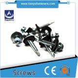 M2 klopfender Schrauben-Hex Kontaktbuchse-Schutzkappen-Kopf-Gewindeschneidschraube-Edelstahl-