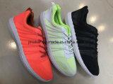 Chaussures respirables de maille lumineuse de couleur d'été
