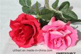 Fiore artificiale della Rosa di singola alta qualità del gambo per la decorazione